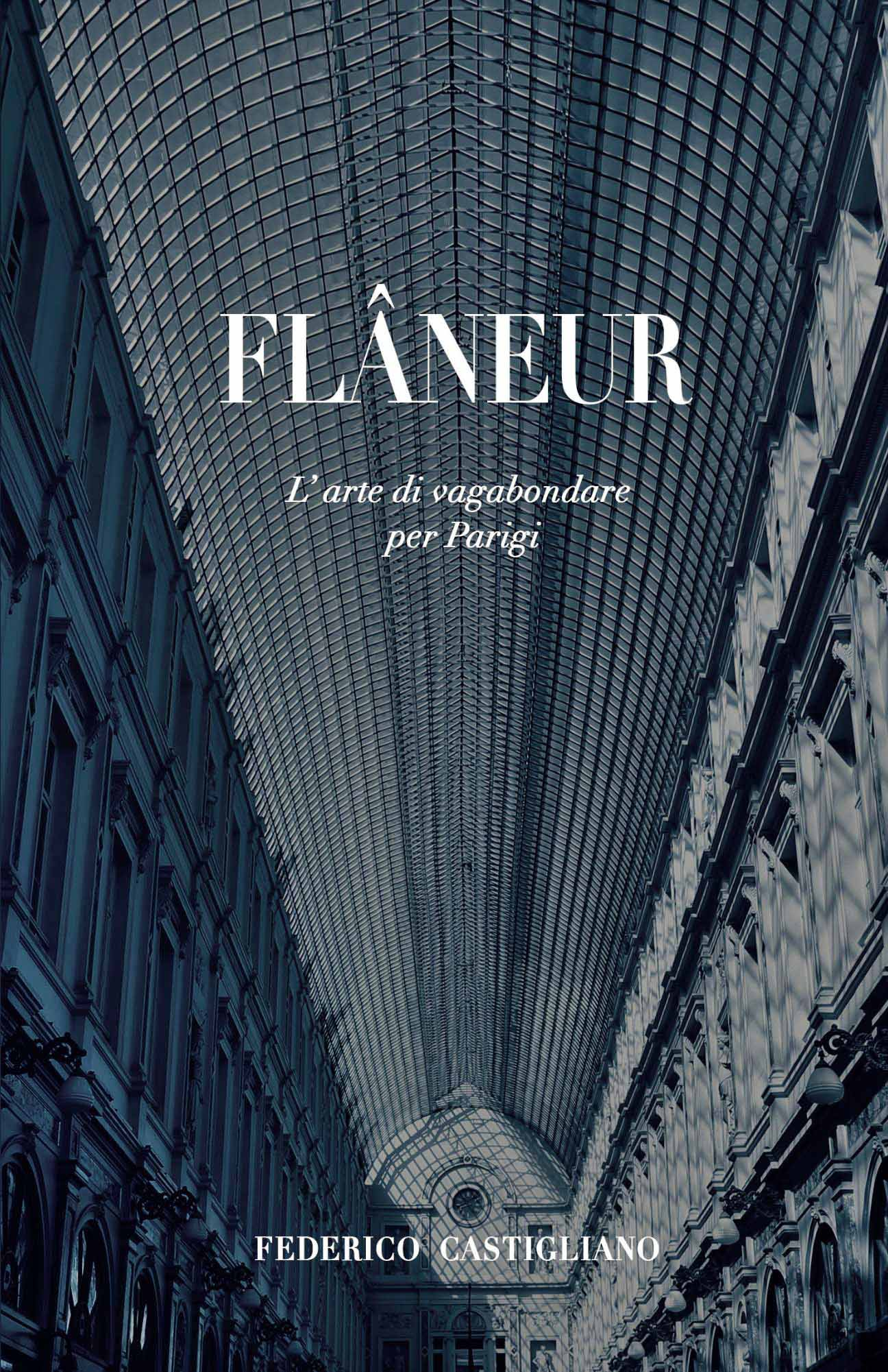 Flaneur-Kindle-cover