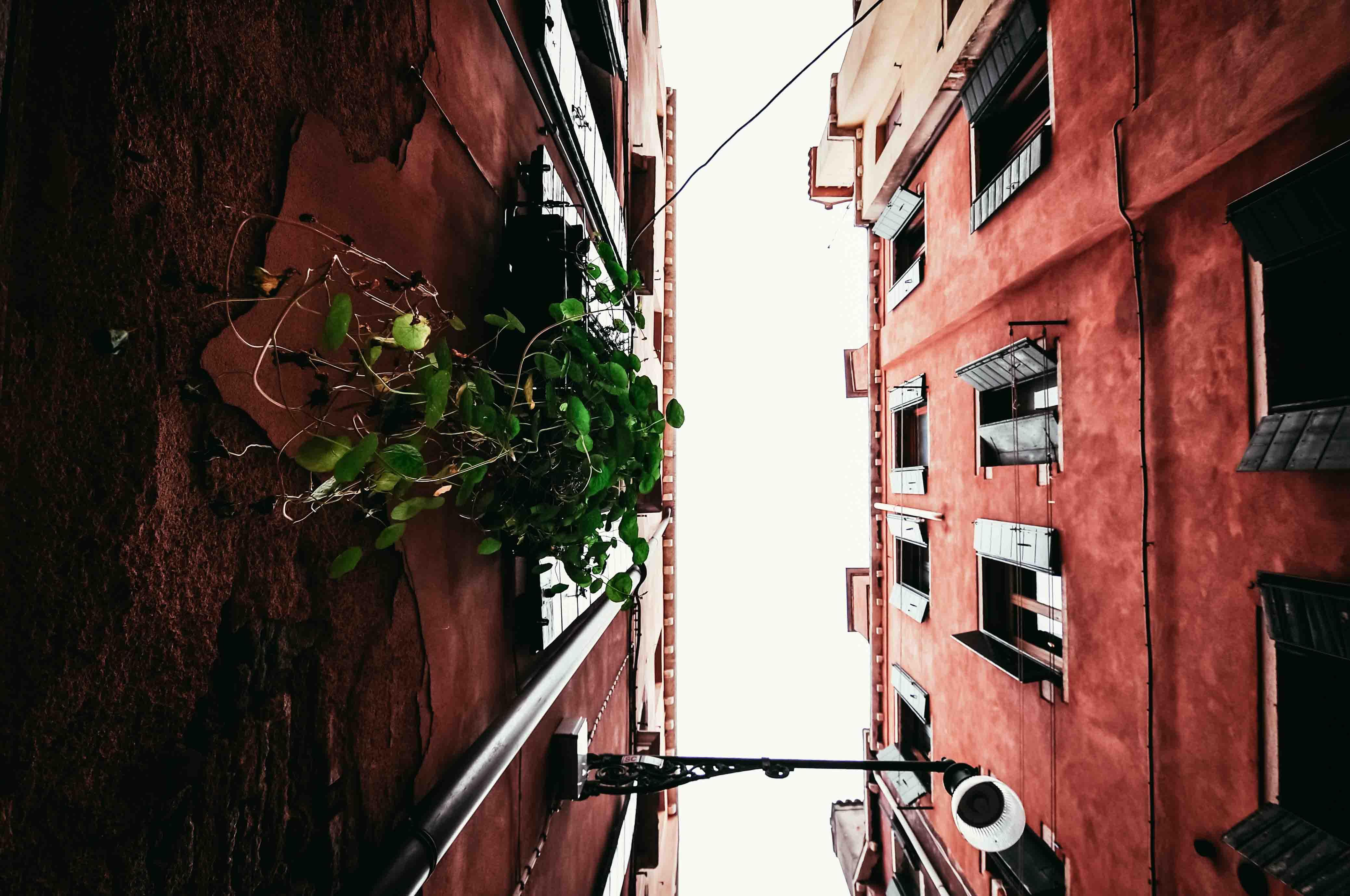 regole-flaneur-guardare-scoprire-camminando