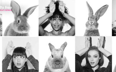 8,3 milioni di firme contro l'animal testing in ambito cosmetico